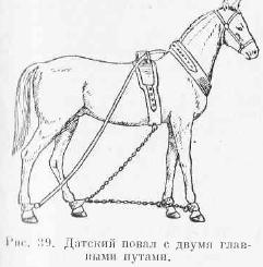Как сделать путы для лошади своими руками